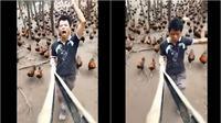 Lelaki bernyanyi dengan ditemani ratusan ayam ternaknya (dok.Twitter/@AnimalsWorId/status/1361897117468422144?/Komarudin)