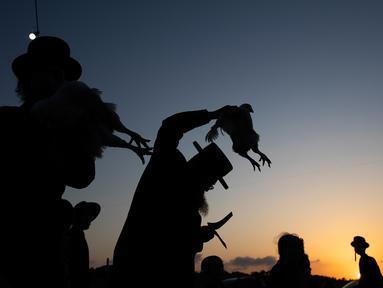 Seorang pria Yahudi Ultra-Ortodoks mengayunkan ayam di atas kepalanya sebagai bagian dari ritual Kaparot di Beit Shemesh, Israel, Minggu (6/10/2019). Ayam ini kemudian akan disembelih menjadi pengganti seseorang tersebut sebagai penebusan untuk dosa-dosanya. (AP/Oded Balilty)