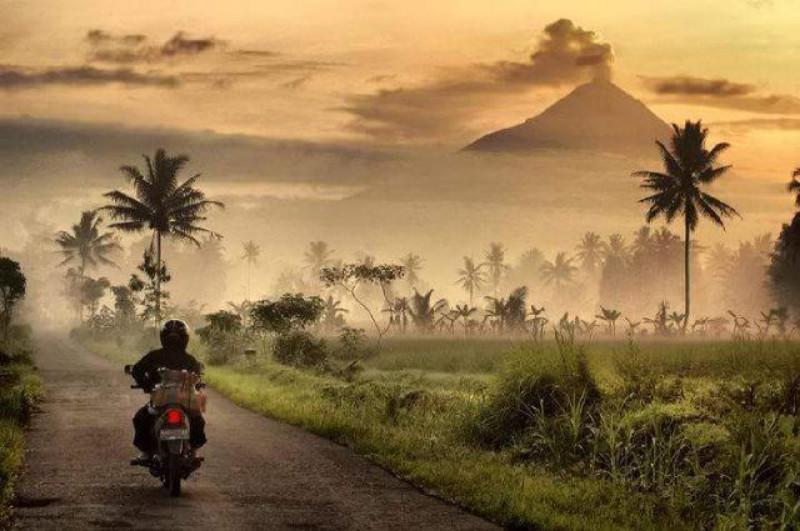 Pagi hari selalu disambut warga kaki Merapi dengan giat bekerja, kabut tak menghalangi mereka. (foto : Liputan6.com / danu/ edhie prayitno ige)