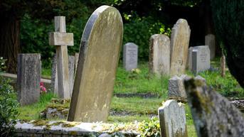 Pria Temukan Rambut Manusia Keluar dari Kuburan Berusia 100 Tahun di California
