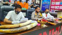 Kapolres Indragiri Hulu dalam konferensi pers penangkapan dua pemburu gajah. (Liputan6.com/Istimewa)