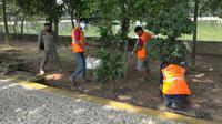 Para pelanggar PSBB Palembang dikenakan hukuman sanksi sosial menyapu dan membersihkan toilet di Taman Kambang Iwak Park (KIP) Palembang (Liputan6.com / Nefri Inge)