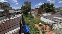 Buah-buahan dan sayuran tumbuh di sebidang tanah yang dipulihkan oleh tetangga dari properti terbengkalai di lingkungan La Pastora di Caracas, Venezuela (13/9/2020). Hasil panen juga dibagikan untuk tetangga atau dijual sebagian. (AP Photo/Matias Delacroix)