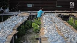 Pekerja menyelesaikan pengolahan ikan asin di kawasan Muara Angke, Jakarta, Kamis (4/7/2019). Hasil produksi ikan asin tersebut dipasarkan di wilayah Jakarta dan berbagai wilayah lainnya. (Liputan6.com/Faizal Fanani)