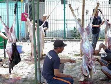 Hari Ini, Masjid Agung Al Azhar Gelar Pemotongan Hewan Kurban
