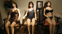 Penutupan  klub seks yang terlalu lama di Belanda, pelaku usaha membuat prostitusi alternatif dengan menyediakan layanan boneka seks bagi para pelanggan.