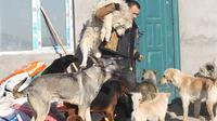 Wang Yan memang telah berkomitmen selama hidupnya untuk menyelamatkan anjing liar yang menjadi korban pemotongan hewan.