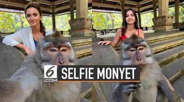 Akhir-akhir ini makin banyak foto selfie manusia dengan hewan. Sekilas bila dilihat, si hewan nampak mahir memegang kamera.
