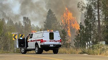 Penampakan Kebakarahan Hutan di California Utara