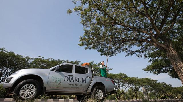 Sebagai Duta Lingkungan Djarum Trees For Life