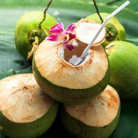 ilustrasi kelapa muda/copyright by SOUTHERNTraveler (Shutterstock)