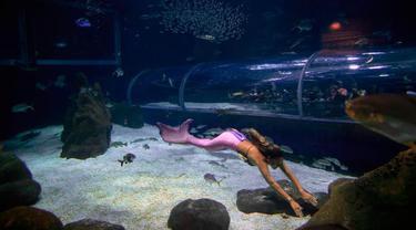 Protes Pencemaran Laut, Mahasiswi Cantik Ini Jadi Putri Duyung