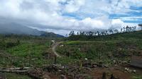 Kawasan TN Kerinci Seblat sudah sejak lama kerap dirambah untuk dijadikan kawasan perkebunan. (Dok. Istimewa/B Santoso)