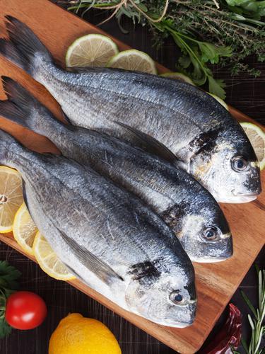 10 Jenis Ikan Tawar Yang Paling Sering Dikonsumsi Di Indonesia Lifestyle Fimela Com