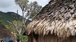 Aktivitas warga di Distrik Puldama, Kabupaten Yahukimo, Provinsi Papua. Distrik Puldama berada di ketinggian sekitar 800m di Pegunungan Jayawijaya. (Liputan6.com/HO/Hadi M Juraid)