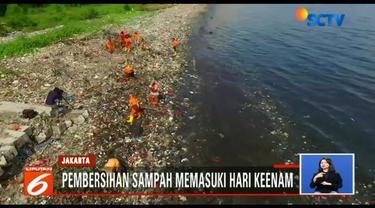 Sebelumnya, temuan lautan sampah plastik terlihat di kawasan Muara Angke. Banyaknya sampah bahkan menyebar hingga 1,5 hektare ke kawasan konservasi taman hutan mangrove.