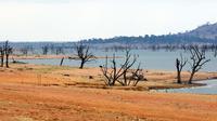 Foto ilustrasi kekeringan di Australia. Foto diambil pada 2009 di Danau Hume, perbatasan Negara Bagian Victoria, memperlihatkan keringnya Sungai Murrays yang mengaliri Australia bagian barat (TORSTEN BLACKWOOD / AFP)