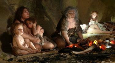Inilah Makanan Manusia Neanderthal *OTW