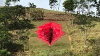 Seniman Juliana Notari memasang karya berjudul Diva di taman seni pedesaan di Pernambuco, Brasil. (Foto: Juliana Notari)