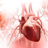 Tembakau dan Kaitannya dengan Penyakit Jantung (liya Graphics/Shutterstock)