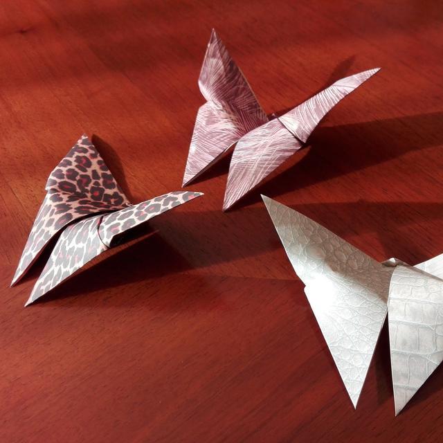 Cara Membuat Kupu Kupu Dari Kertas Origami Mudah Dan Praktis Hot Liputan6 Com