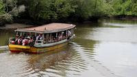 Perahu sekolah. Jika di kota dikenal bus sekolah, di delta Mahakam akhirnya ada kapal sekolah atau perahu sekolah yang bertugas memfasilitasi antar jemput anak sekolah. (foto: Liputan6.com/abdul jalil)