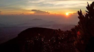 Sunrise Gunung Gede
