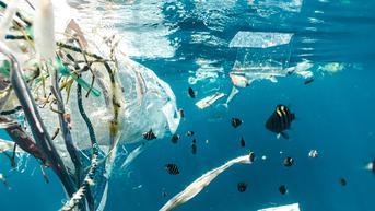 Baru Sehari Dibuka untuk Turis, Perairan Langkawi Sudah Penuh Sampah
