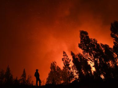Seorang petugas pemadam kebakaran memantau kebakaran di Amendoa di Macao, Portugal tengah (21/7/2019). Lebih dari seribu petugas pemadam kebakaran berjuang untuk memadamkan kebakaran hutan tersebut. (AFP Photo/Patricia De Melo Moreira)