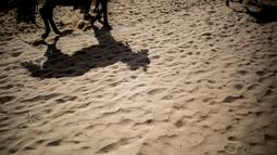 Siluet seekor kuda terlihat di pasir sebelum mengikuti lomba pacuan kuda di sepanjang pantai di Sanlucar de Barrameda, Spanyol pada 11 Agustus 2019. Balap kuda di tepi pantai ini merupakan acara tahunan yang telag berlangsung selama lebih dari 140 tahun. (AP Photo/Javier Fergo)