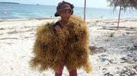 Perairan di Lombok Timur,NTB adalah surga bagi rumput laut. Di salah satu sudut, Iskandar Ismail tengah memeriksa rumput-rumput kenyal itu. (Mevi Linawati/Liputan6.com)