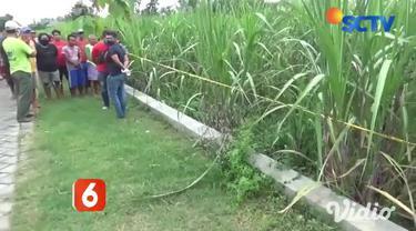 Penemuan jasad seorang wanita di kebun tebu membuat geger warga Desa Rejoslamet, Kecamatan Mojowarno, Jombang, Jawa Timur. Jenazah wanita diduga tewas sudah lebih dari 5 hari lantaran kondisi tubuhnya sudah tidak dikenali.