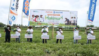 Ada Program Makmur, Produktivitas Petani Semangka di Jember Naik 117 Persen