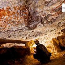 Lukisan sejumlah binatang yang diyakini sebagai yang tertua di dunia berhasil diidentifikasi dalam sebuah gua di pulau Kalimantan, Indonesia. Lukisan tersebut diklaim berusia 40.000 tahun.