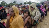 Etnis Muslim Rohingya, yang baru saja melintas perbatasan Myanmar menuju Bangladesh, sedang menunggu giliran menerima bantuan makanan dekat kamp pengungsi Balukhali (AP)