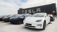 Kendaraan Tesla Model 3 yang diproduksi di China (made in China) di gigafactory Tesla yang terletak di Shanghai, China pada 26 Oktober 2020. Tesla, pabrikan mobil AS, mengumumkan akan mengekspor 7.000 kendaraan Model 3 yang diproduksi di China ke Eropa pada Selasa (27/10). (Xinhua/Ding Ting)