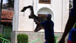 Panitia memindahkan daging hewan kurban di Masjid Daarul Falah, Jakarta Selatan, Selasa (20/7/2021). Umat muslim seluruh dunia serempak merayakan Hari Raya Idul Adha yang ditandai dengan pemotongan hewan kurban sehari setelah jemaah haji wukuf di Padang Arafah. (Liputan6.com/Angga Yuniar)