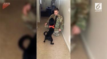 Seekor anjing memeluk pemiliknya yang telah meninggalkannya selama 2 minggu.