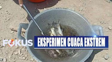 Partini dan para tetangganya mengaku melakukan percobaan menggoreng ikan ini untuk membuktikan panas matahari yang belakangan dikabarkan meningkat.