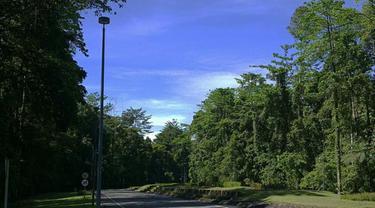 6 Fakta Menarik tentang Kuala Kencana, Kota Modern di Tengah Hutan Mimika Papua