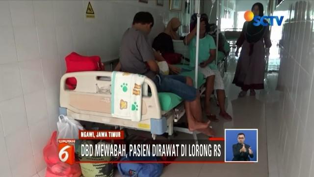 Penderita DBD di Ngawi, Jawa Timur, membludak hingga pasien harus dirawat di lorong rumah sakit.