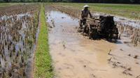 Pemerintah meresmikan Jaringan Irigasi Air Tanah untuk masyarakat petani di Desa Rejomulyo, Lampung Selatan