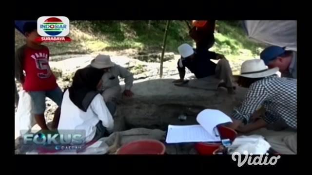 Fosil kerang dan terumbu karang yang diduga merupakan zaman purba, ditemukan di sebuah aliran Sungai Bengawan Solo, yang melintas di wilayah Ngawi, Jawa Timur.