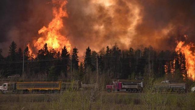 Kebakaran Besar Hanguskan Hutan, 1 Kota di Kanada Evakuasi Massal - Global  Liputan6.com