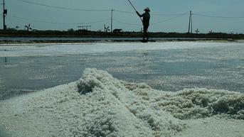 Indonesia Impor Garam 3,07 Ton di 2021, Menperin Bongkar Penyebabnya