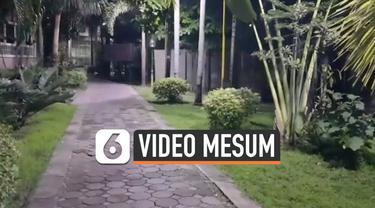 vertical mesum