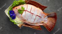 Ilustrasi ikan nila, resep, masakan. (Photo by jcomp on Freepik)