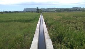 Jaringan irigasi tersier di Jayapura tingkatkan IP jadi 300 persen.