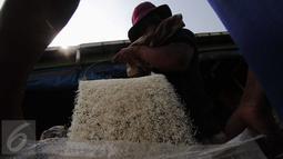 Dua pekerja memasukkan beras ke dalam karung di Pasar Induk Cipinang, Jakarta, Selasa (5/1/2016). Pasokan dan harga beras di Pasar Induk Cipinang pada awal 2016 masih stabil. Stok beras di gudang saat ini sekitar 40 ribu ton. (Liputan6.com/Angga Yuniar)