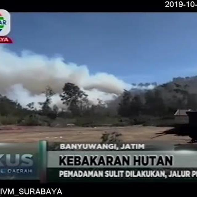 Video Kebakaran Hutan Di Gunung Ranti Meluas Ke Lereng Ijen